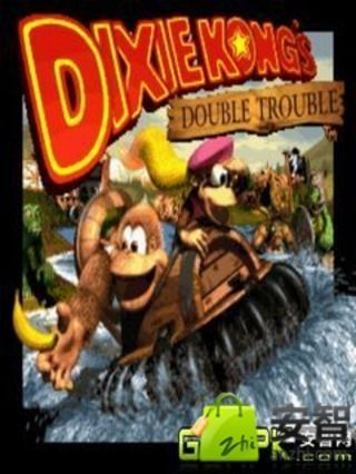 DonkeyKongCountry3